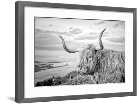 Highland Cows IV-Joe Reynolds-Framed Art Print