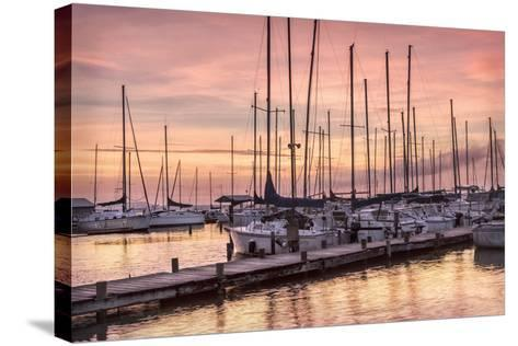 Set to Sail-Danny Head-Stretched Canvas Print