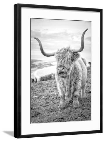 Highland Cows VI-Joe Reynolds-Framed Art Print