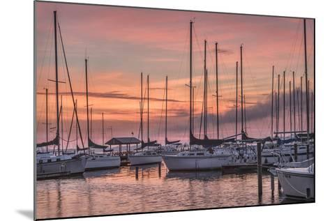 Dawning Day-Danny Head-Mounted Photographic Print
