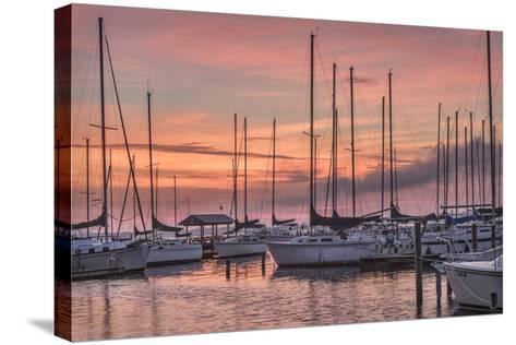 Dawning Day-Danny Head-Stretched Canvas Print