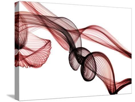 Invisible World II-Irena Orlov-Stretched Canvas Print