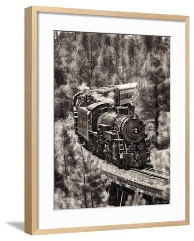Train Arrival III-David Drost-Framed Art Print