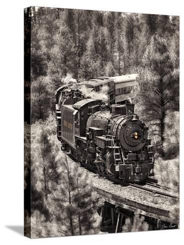 Train Arrival III-David Drost-Stretched Canvas Print