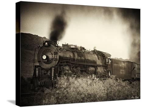 Train Arrival I-David Drost-Stretched Canvas Print