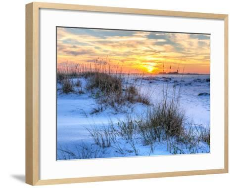 A Colorful Sunset over the Seaoats and Dunes on Fort Pickens Beach in the Gulf Islands National Sea-Colin D Young-Framed Art Print