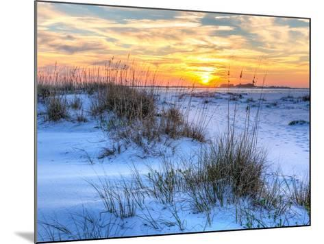 A Colorful Sunset over the Seaoats and Dunes on Fort Pickens Beach in the Gulf Islands National Sea-Colin D Young-Mounted Photographic Print