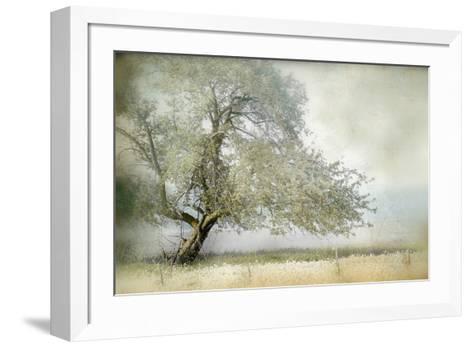 Tree In Field Of Flowers Photographic Print By Mia Friedrich Art