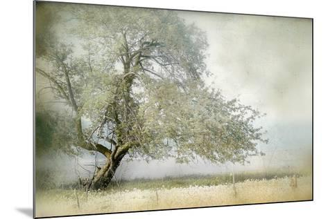 Tree in Field of Flowers-Mia Friedrich-Mounted Photographic Print