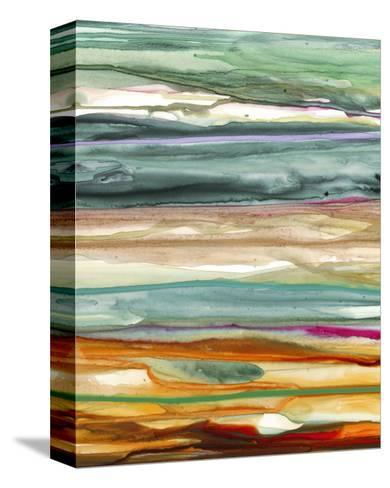 Color Splash 3-Tracy Hiner-Stretched Canvas Print