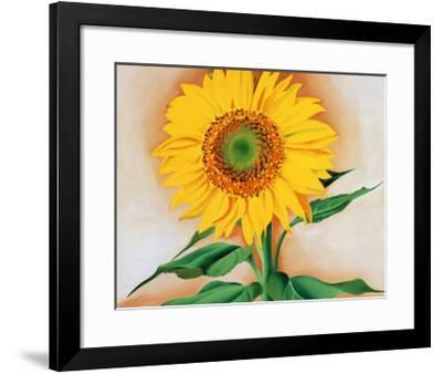 Sunflower-Georgia O'Keeffe-Framed Art Print