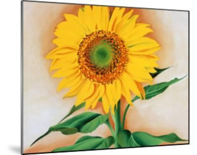 Sunflower-Georgia O'Keeffe-Mounted Art Print
