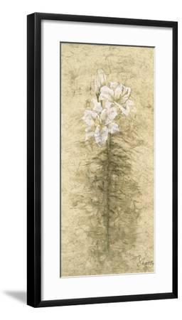 Lily Fair-B^ J^ Zhang-Framed Art Print