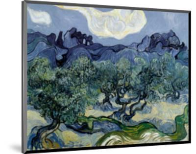 Landscape with Olive Trees-Vincent van Gogh-Mounted Art Print