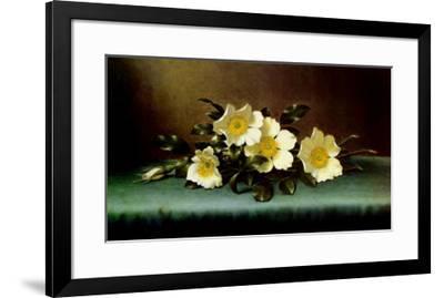 Four Cherokee Roses-Martin Johnson Heade-Framed Art Print