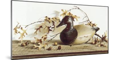 Chesapeake Bay Canvasback-Pauline Ebl? Campanelli-Mounted Art Print