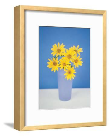 Gerbera--Framed Art Print