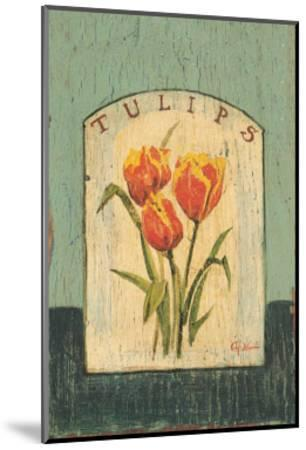 Tulips-Thomas LaDuke-Mounted Art Print