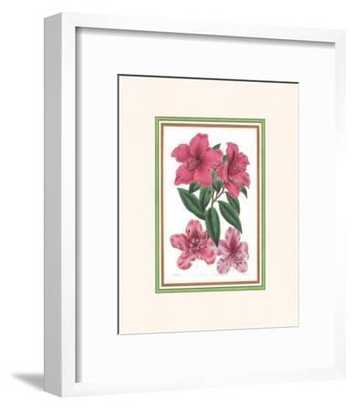 Azalea I--Framed Art Print