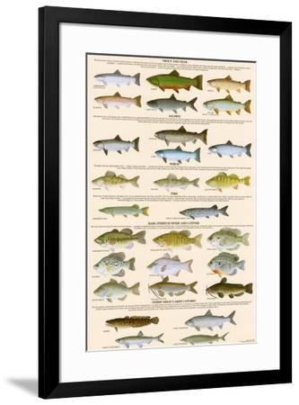 Great Lakes Sportman's Game Fish--Framed Art Print