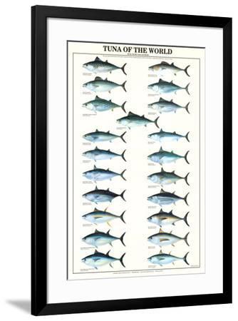 Tuna of the World--Framed Art Print