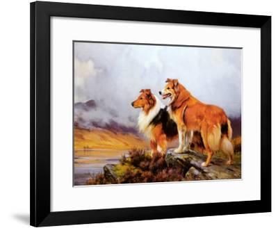 Collies in a Highland Landscape-Wright Barker-Framed Art Print