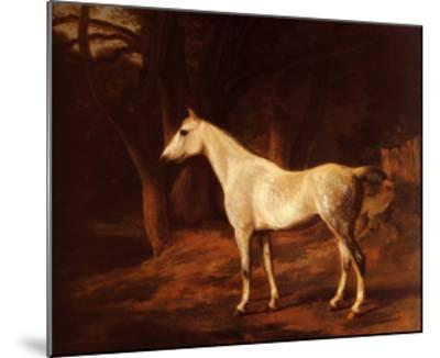 Forest Dapple-Jacques-Laurent Agasse-Mounted Art Print