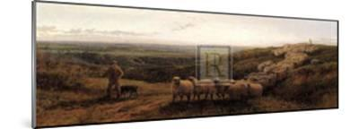 The Old Sheep Trail-G^ Shalders-Mounted Art Print
