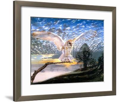Barn Owl-J Cooksley-Framed Art Print
