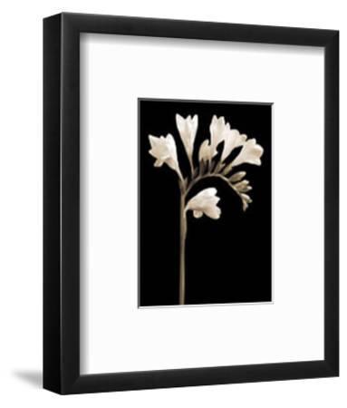 Black and White V-Edoardo Sardano-Framed Art Print