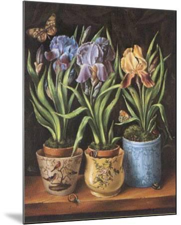 Pots with Narcissus-Milieu Du Ciel-Mounted Art Print