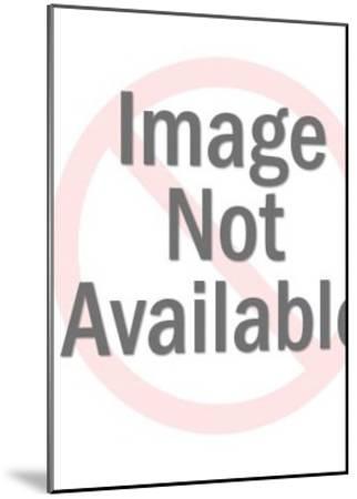 Tournée du Chat Noir, c.1896--Mounted Art Print