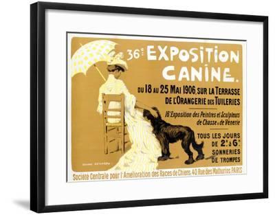 36th Exposition Canine de Briard-Edouard Doigneau-Framed Giclee Print
