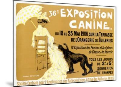 36th Exposition Canine de Briard-Edouard Doigneau-Mounted Giclee Print