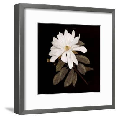 Serenity-Jan Sacca-Framed Art Print