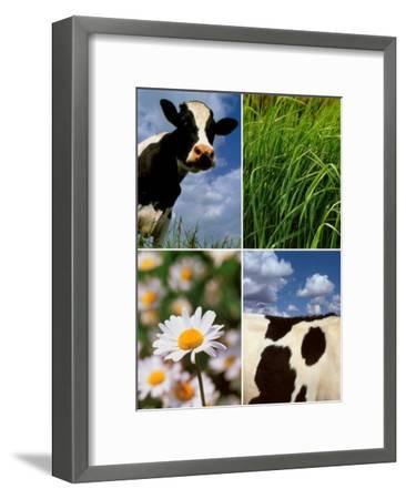 Pastoral Cow-Panais & Morcime Dumoulin-Framed Art Print