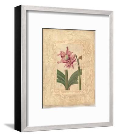 Estudio de Flores II-Javier Fuentes-Framed Art Print