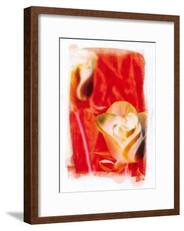 Colours of Summer IV-Antonio Carrano-Framed Art Print