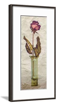 Rose in a Pot III-Giancarlo Riboli-Framed Art Print