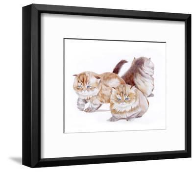 Puppies and Kittens II-D^ Patrian-Framed Art Print