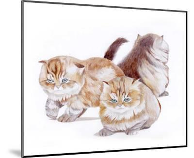 Puppies and Kittens II-D^ Patrian-Mounted Art Print