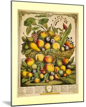 Fruits of the Season Summer-Robert Furber-Mounted Art Print