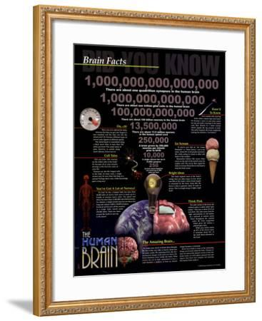 Brain Facts--Framed Art Print