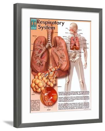 Respiratory System--Framed Art Print