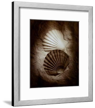 Scallops-Laurel Wade-Framed Art Print