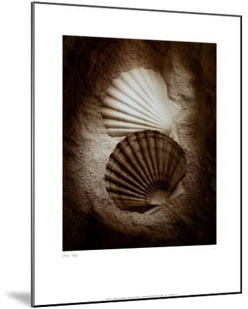 Scallops-Laurel Wade-Mounted Art Print