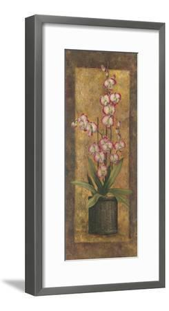 Potted Orchid in Pink-T^ C^ Chiu-Framed Art Print