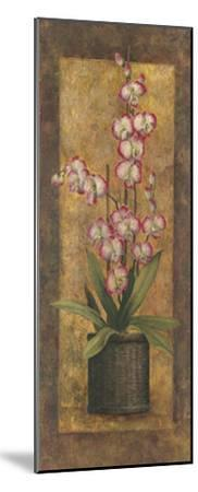 Potted Orchid in Pink-T^ C^ Chiu-Mounted Art Print