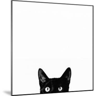 Curiosity-Jon Bertelli-Mounted Art Print