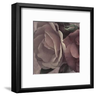 Parfum I-S^ G^ Rose-Framed Art Print